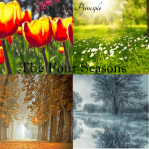 Audioprojekt: The Four Seasons